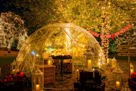 4 Days Only! Exclusive Christmas Dinner Inside Garden Igloo with Lantern Illumination