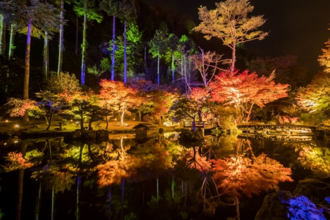 "2020 ""Akiu Night Museum"" Autumn Colors Illumination at Tenshukaku-Shizen-koen Park"
