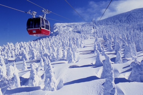 """GoTo! DAY TRIP to the Snow Monsters "" Departing From Kaminoyama Onsen, Yamagata Prefecture"