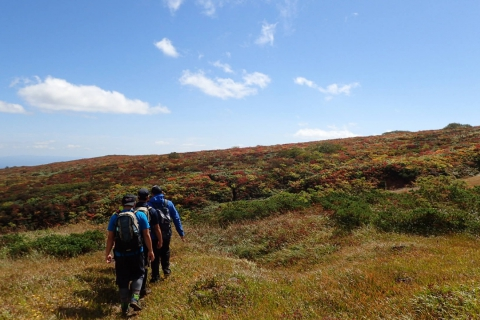Mt. Kurikoma Guided Hiking Tour ~Uragake Course~